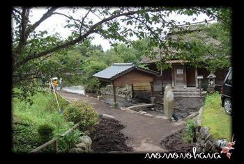 金鱗湖.2.JPG